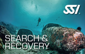 SSI Search & Recovery