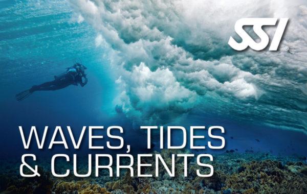 Waves Tides & Currents